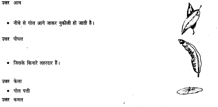 NCERT Solutions for Class 3 Hindi Chapter-14 सबसे अच्छा पेड़ 3