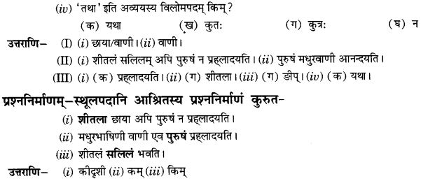 NCERT Solutions for Class 10th Sanskrit Chapter 1 Vadmayam Thapaha 17