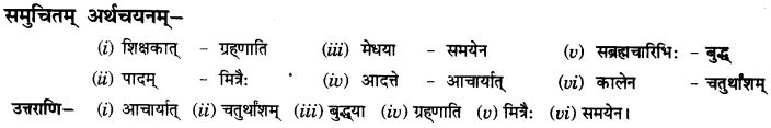 NCERT Solutions for Class 10th Sanskrit Chapter 1 Vadmayam Thapaha 29