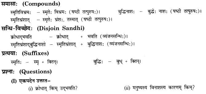 NCERT Solutions for Class 10th Sanskrit Chapter 5 Abhyasavashagam Manah 13