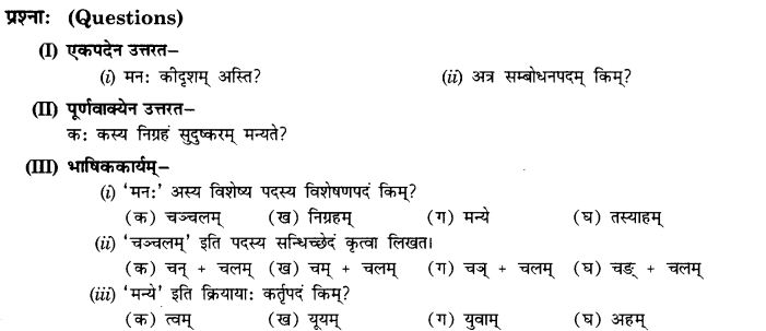 NCERT Solutions for Class 10th Sanskrit Chapter 5 Abhyasavashagam Manah 19