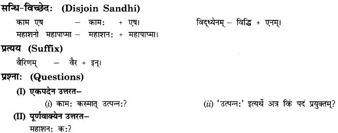NCERT Solutions for Class 10th Sanskrit Chapter 5 Abhyasavashagam Manah 5