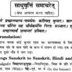 NCERT Solutions for Class 10th Sanskrit Chapter 6 साधुवृत्ति समाचरेत् 1