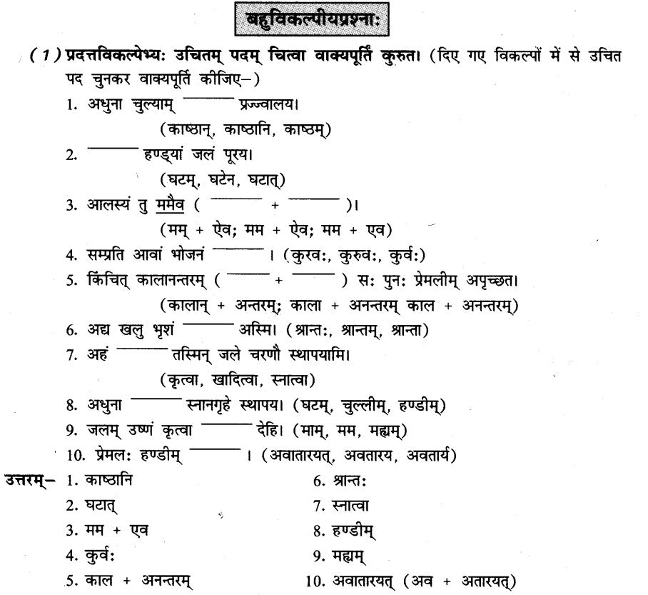 NCERT Solutions for Class 8th Sanskrit Chapter 6 प्रेमलस्य प्रेमल्याश्च कथा 12