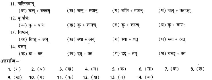 NCERT Solutions for Class 9th Sanskrit Chapter 19 Shatr Shanach Pratyayoh Prayogah 14