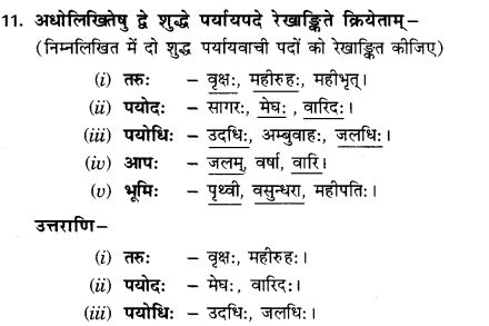 NCERT Solutions for Class 9th Sanskrit Chapter 3 Patheyam 38
