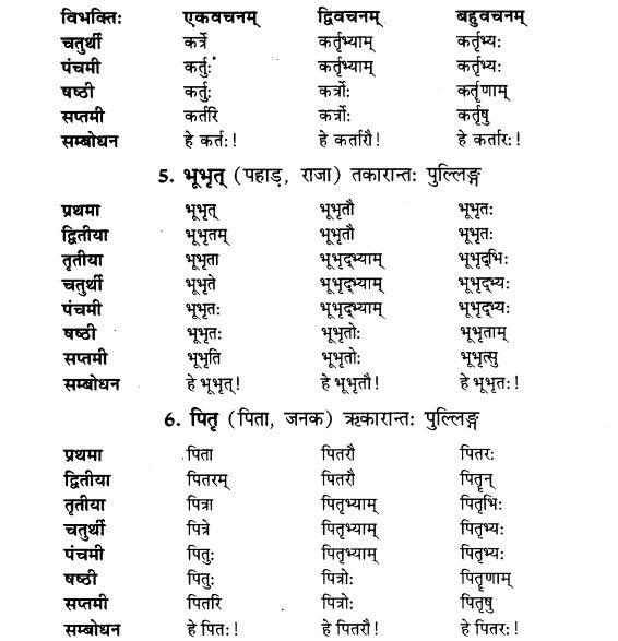 NCERT Solutions for Class 9th Sanskrit Chapter 5 Anathsabdhah, Halanthsabdah, Sarvnamsabdah, Sankhyavachansabdah 2
