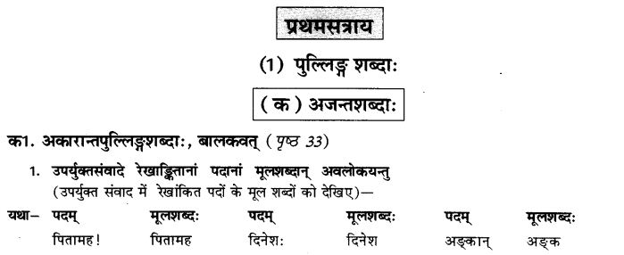 NCERT Solutions for Class 9th Sanskrit Chapter 5 Anathsabdhah, Halanthsabdah, Sarvnamsabdah, Sankhyavachansabdah 23