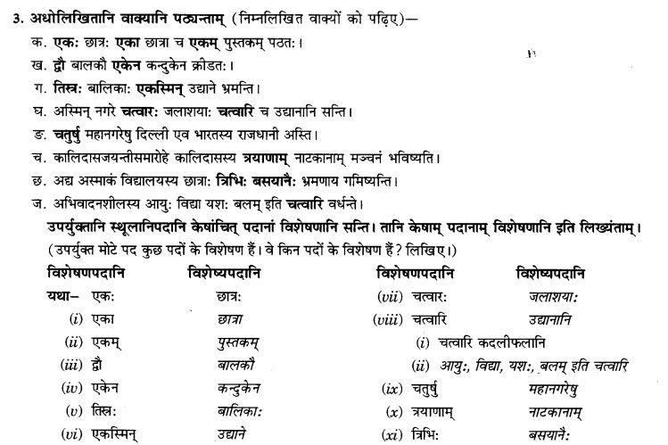 NCERT Solutions for Class 9th Sanskrit Chapter 5 Anathsabdhah, Halanthsabdah, Sarvnamsabdah, Sankhyavachansabdah 58
