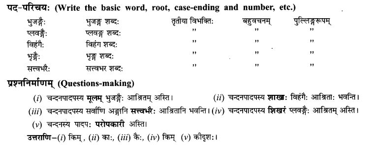 NCERT Solutions for Class 9th Sanskrit Chapter 7 Tarave Namostu 11