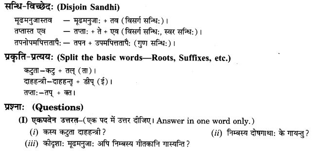 NCERT Solutions for Class 9th Sanskrit Chapter 7 Tarave Namostu 13