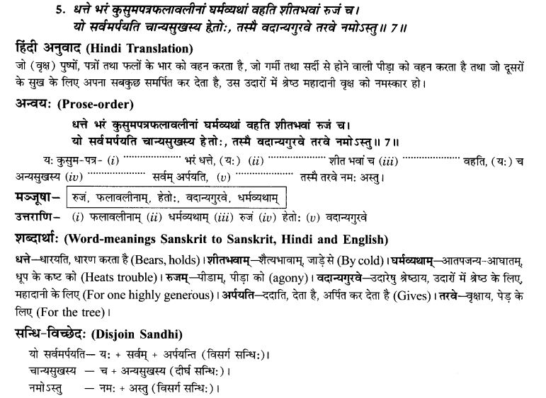 NCERT Solutions for Class 9th Sanskrit Chapter 7 Tarave Namostu 16