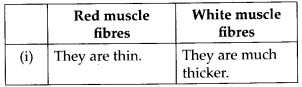 NCERT Solutions For Class 11 Biology Locomotion and Movement Q5.1