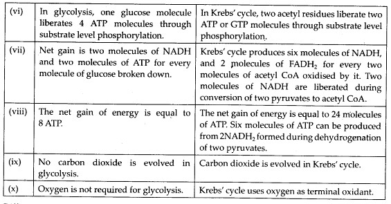 NCERT Solutions For Class 11 Biology Respiration in Plants Q2.2