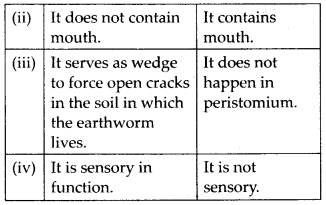 NCERT Solutions For Class 11 Biology Structural Organisation in Animals Q7.1
