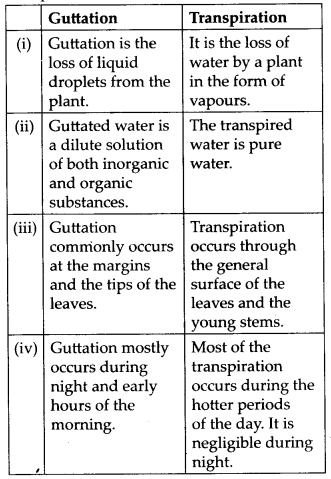NCERT Solutions For Class 11 Biology Transport in Plants Q16.9