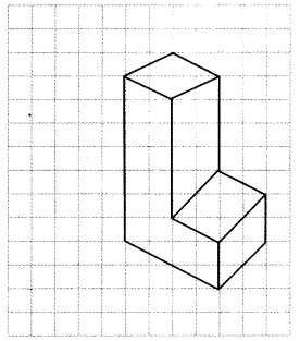 NCERT Solutions for Class 7 Maths Chapter 15 Visualising Solid Shapes Ex 15.2 11