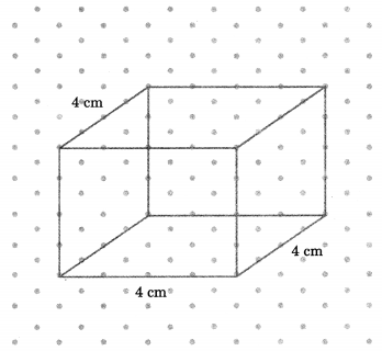 NCERT Solutions for Class 7 Maths Chapter 15 Visualising Solid Shapes Ex 15.2 15