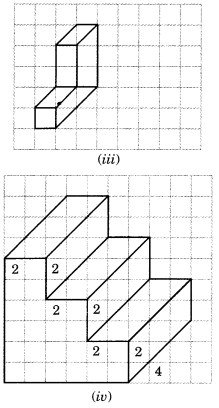NCERT Solutions for Class 7 Maths Chapter 15 Visualising Solid Shapes Ex 15.2 3