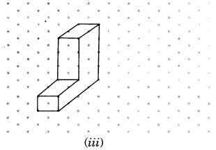 NCERT Solutions for Class 7 Maths Chapter 15 Visualising Solid Shapes Ex 15.2 5