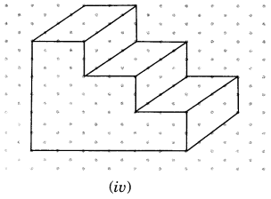 NCERT Solutions for Class 7 Maths Chapter 15 Visualising Solid Shapes Ex 15.2 6