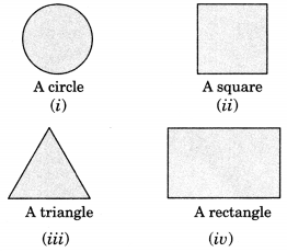 NCERT Solutions for Class 7 Maths Chapter 15 Visualising Solid Shapes Ex 15.4 2