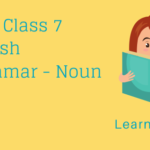 Noun Exercises For Class 7_