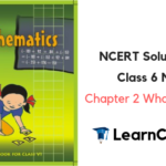 NCERT Solutions for Class 6 Maths Chapter 2 Whole Numbers