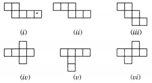 NCERT Solutions for Class 7 Maths Chapter 15 Visualising Solid Shapes 1