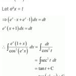 NCERT Solution Class 12 Maths Ex 7.3 Q 24