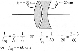 NCERT Solutions for Class 12 Physics Chapter 9 Ray Optics and Optical Instruments Q10