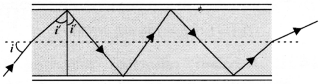NCERT Solutions for Class 12 Physics Chapter 9 Ray Optics and Optical Instruments Q17