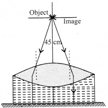 NCERT Solutions for Class 12 Physics Chapter 9 Ray Optics and Optical Instruments Q39.3