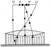NCERT Solutions for Class 12 Physics Chapter 9 Ray Optics and Optical Instruments Q39