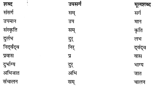 NCERT Solutions for Class 9 Hindi Sparsh Chapter 1 धूल Q1