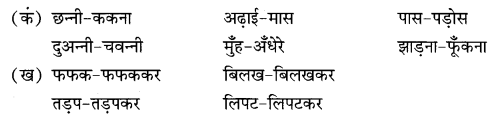 NCERT Solutions for Class 9 Hindi Sparsh Chapter 2 दुःख का अधिकार Q5