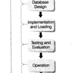 Class 12 Informatics Practices Notes Chapter 14 Back-End Database 1