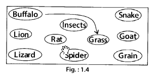 NCERT Exemplar Class 6 Science Chapter 1 Food Where Does It Come From - 5