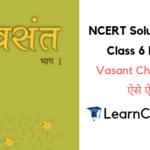 NCERT Solutions for Class 6 Hindi Vasant Chapter 8 ऐसे ऐसे