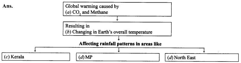 NCERT Solutions for Class 9 English Main Course Book Unit 3 Environment Chapter 2 Save Mother Earth Q6.1