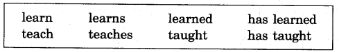 NCERT Solutions for Class 5 English Unit 4 Chapter 2 My Elder Brother 4