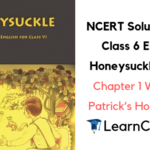 NCERT Solutions for Class 6 English Honeysuckle Prose Chapter 1 Who Did Patrick's Homework