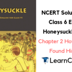 NCERT Solutions for Class 6 English Honeysuckle Prose Chapter 2 How the Dog Found Himself