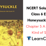 NCERT Solutions for Class 6 English Honeysuckle Prose Chapter 5 A Different Kind of School