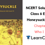 NCERT Solutions for Class 6 English Honeysuckle Prose Chapter 6 Who I Am