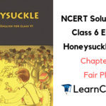 NCERT Solutions for Class 6 English Honeysuckle Prose Chapter 7 Fair Play