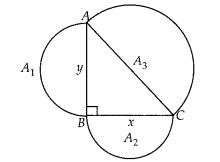 NCERT Exemplar Class 10 Maths Chapter 6 Triangles Ex 6.4 Q17