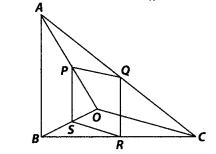 NCERT Exemplar Class 10 Maths Chapter 6 Triangles Ex 6.4 Q4