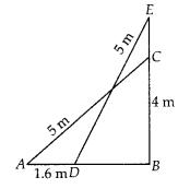 NCERT Exemplar Class 10 Maths Chapter 6 Triangles Ex 6.4 Q5