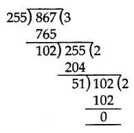 Important Questions for Class 10 Maths Chapter 1 Real Numbers 10